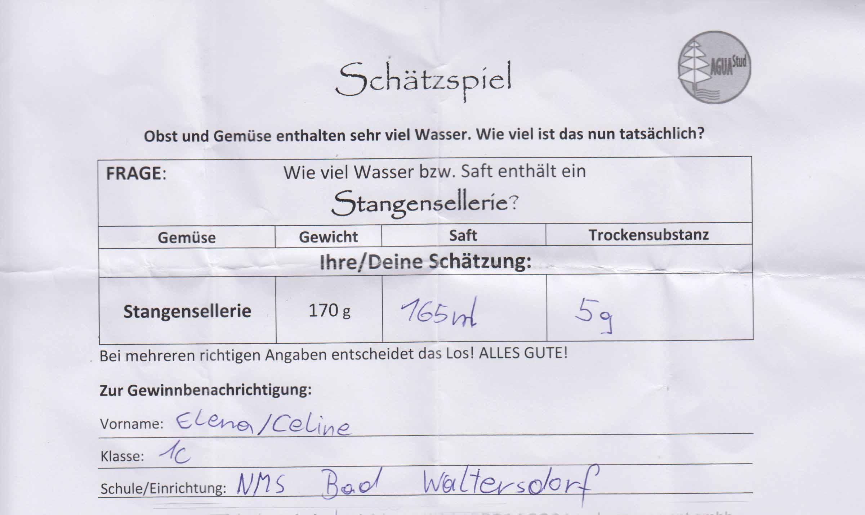 Schätzspiel_Web