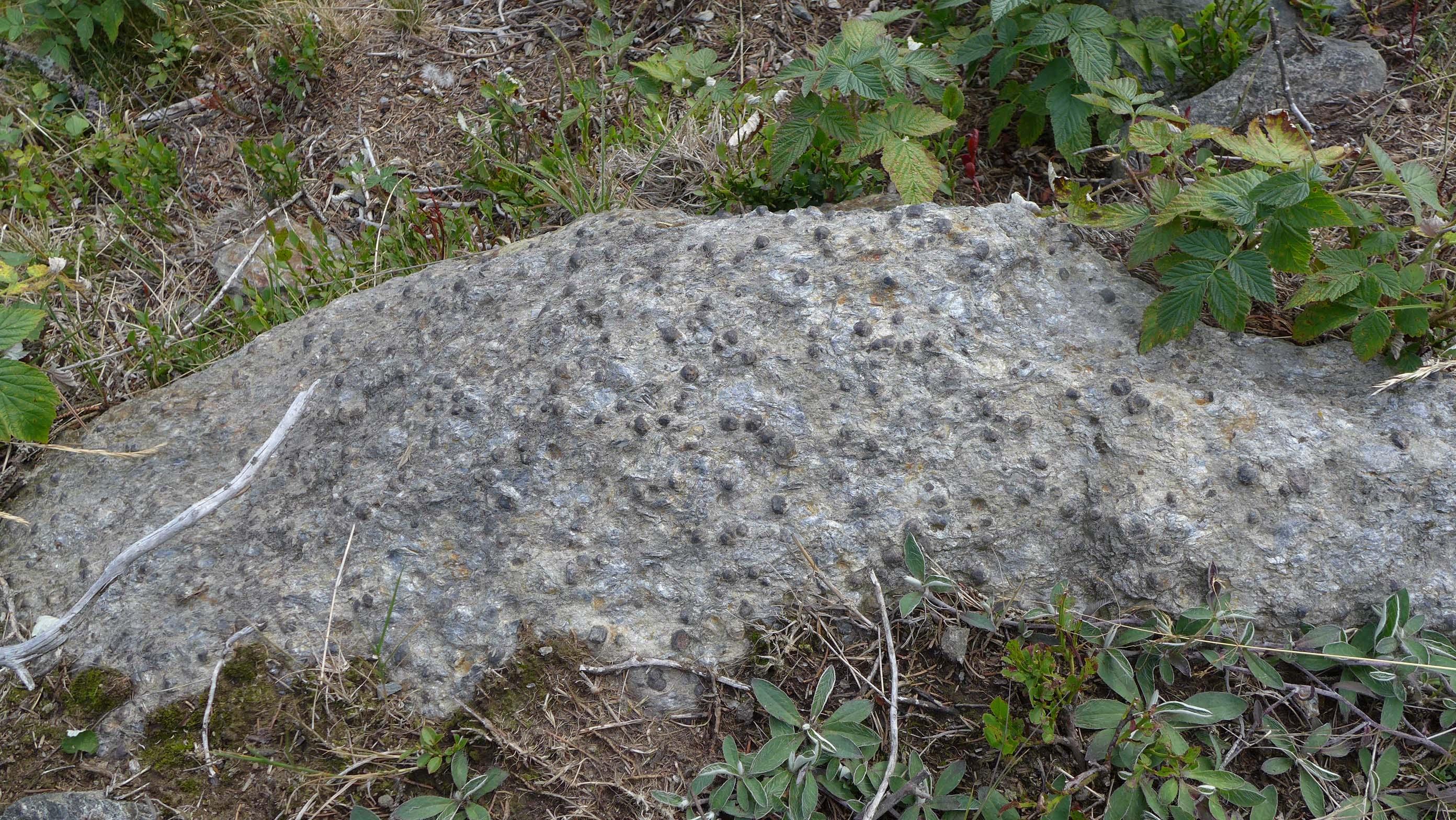 Begeistertes Staunen: Edelsteine über Edelsteine ...
